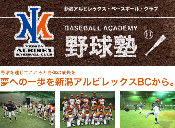 新潟アルビレックス・ベースボール・クラブ野球塾 野球を通じてこころと身体の成長を 夢への一歩を新潟アルビレックスBCから。